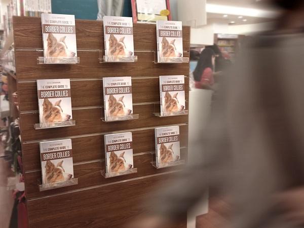 450x600 Bookstore Edition 03_06